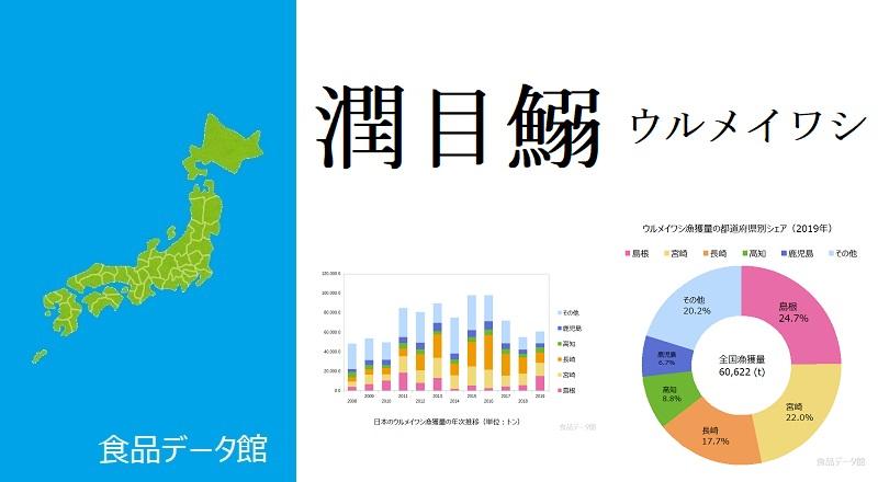 日本のウルメイワシ漁獲量ランキングのアイキャッチ