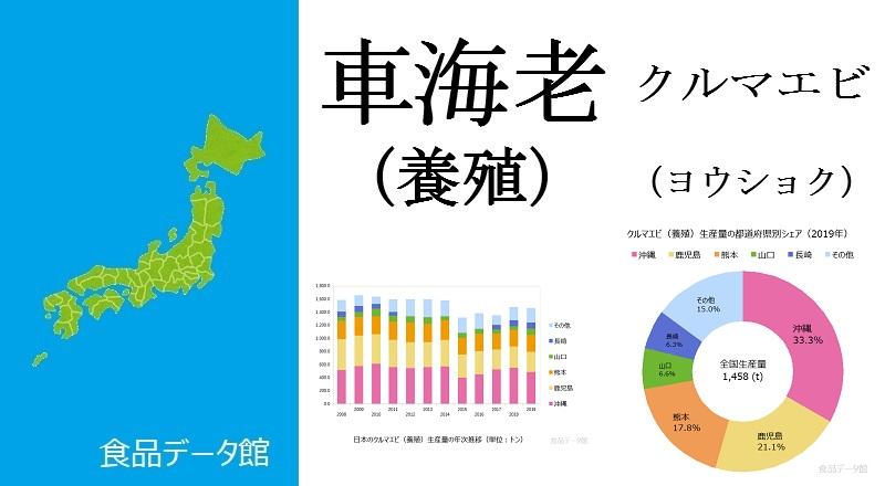 日本のクルマエビ養殖生産量ランキングのアイキャッチ
