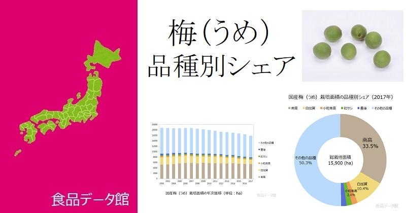 日本の品種別梅(うめ)栽培面積ランキングのアイキャッチ