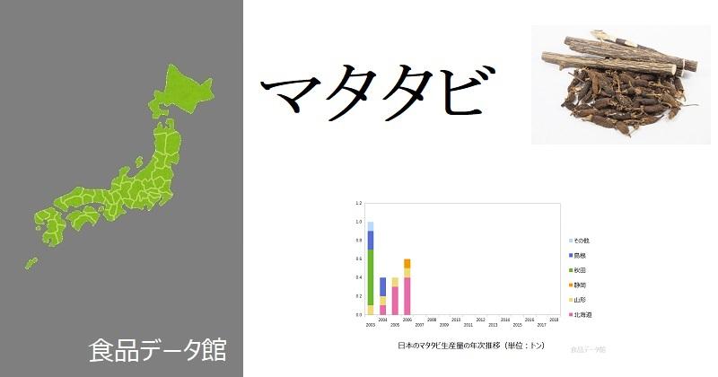 日本のマタタビ生産量ランキングのアイキャッチ